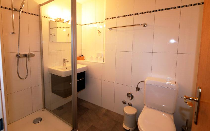 Längfluh 1.5 rooms