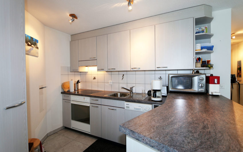 Daniela sunny 3.5 rooms apartment with southfacing balcony central location close to Hotel Schweizerhof.
